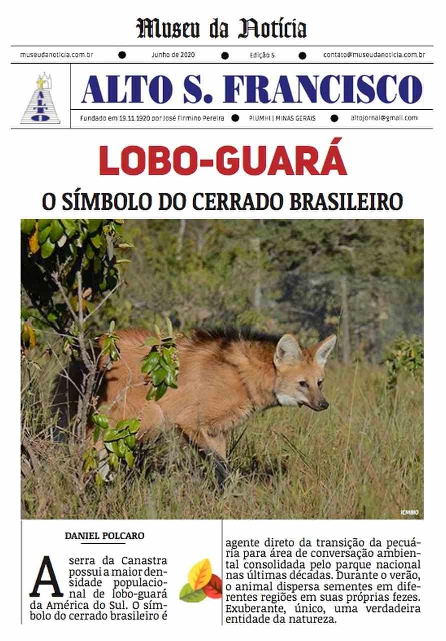 Lobo-guará, o símbolo do cerrado brasileiro